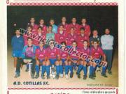 AD Cotillas FC