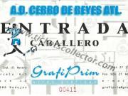 AD Cerro Reyes Atlético